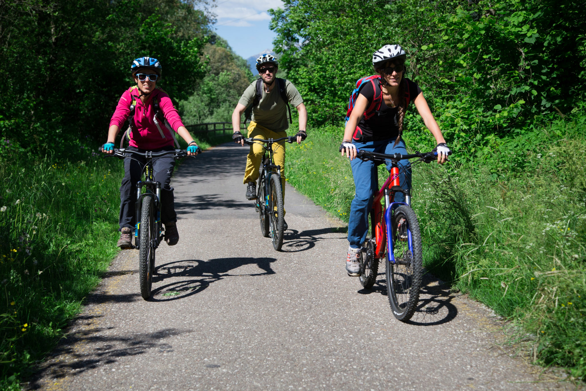 Immagine di testata per Mountain biking in Val di Sole, Trentino