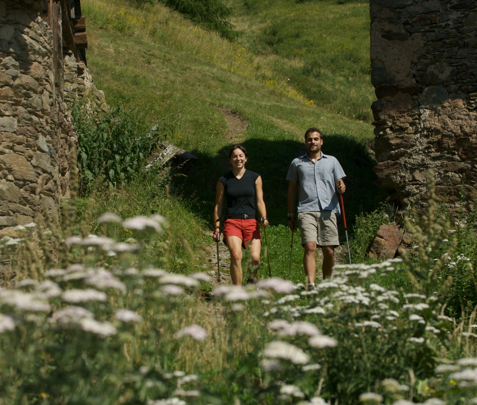 Immagine per Nordic Walking in Val di Pejo: esplorare la natura