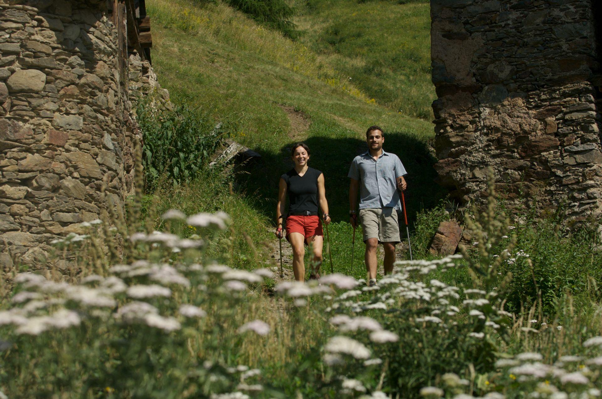 Immagine di testata per Nordic Walking in Val di Pejo: esplorare la natura