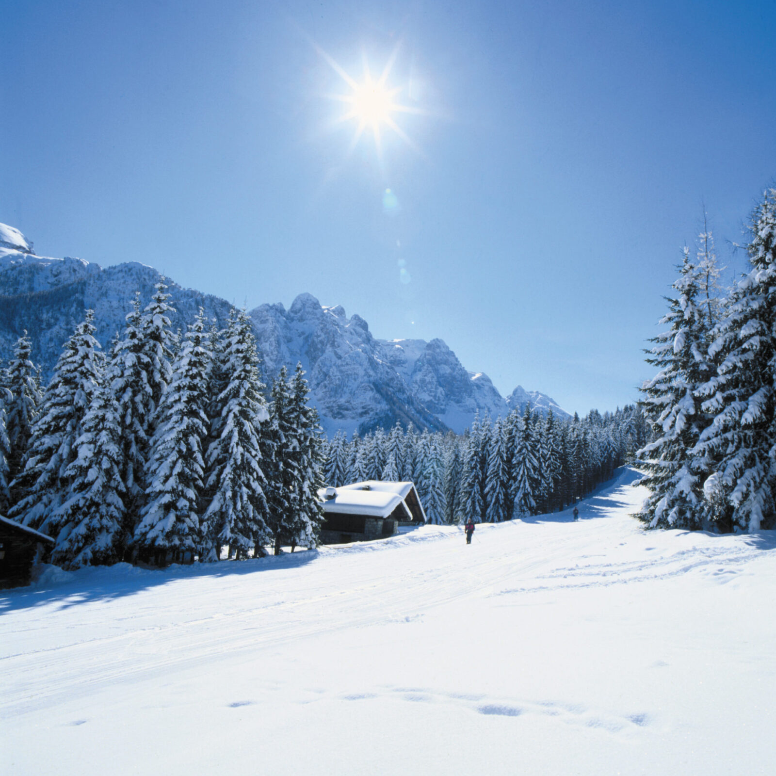 Image for The magic of Nordic skiing in Val di Sole, Trentino