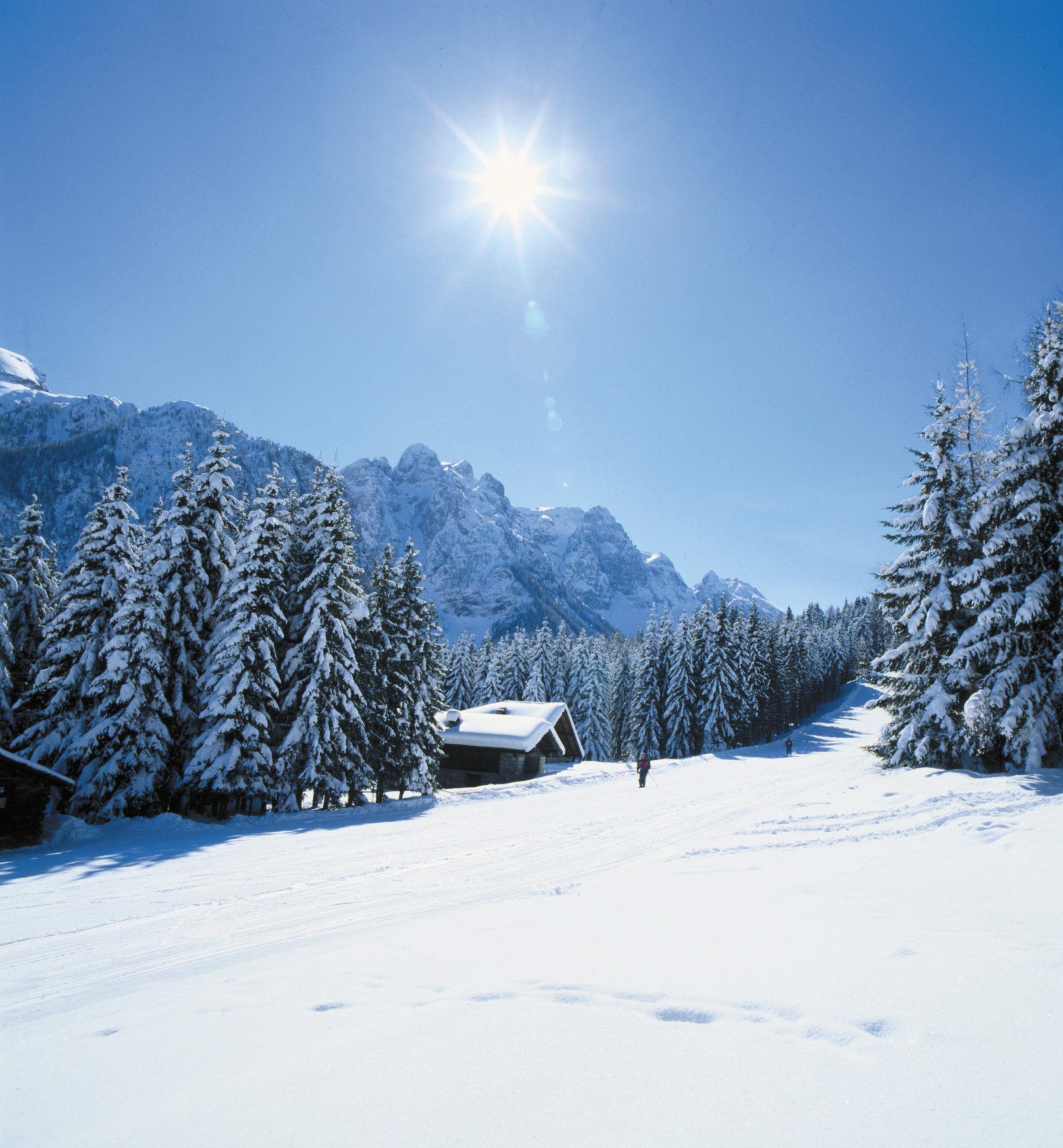 Immagine di testata per La magia dello sci nordico in Val di Sole, Trentino