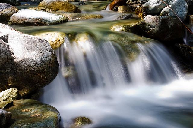 Immagine di testata per Viviamo l'Acqua!