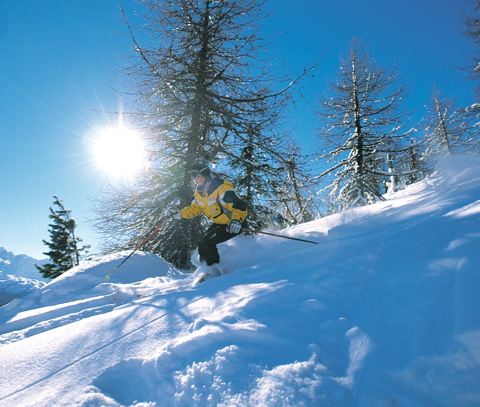 Image for Skiing in Val di Pejo: an unforgettable adventure