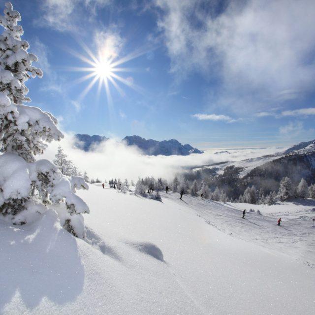 Image for Imperdibile dicembre sugli sci