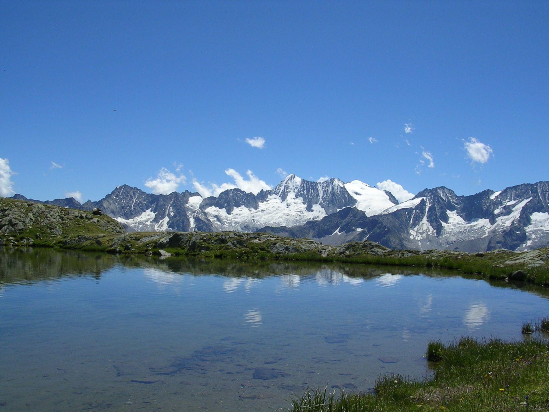 Immagine di testata per Fantastiche escursioni guidate in Val di Pejo