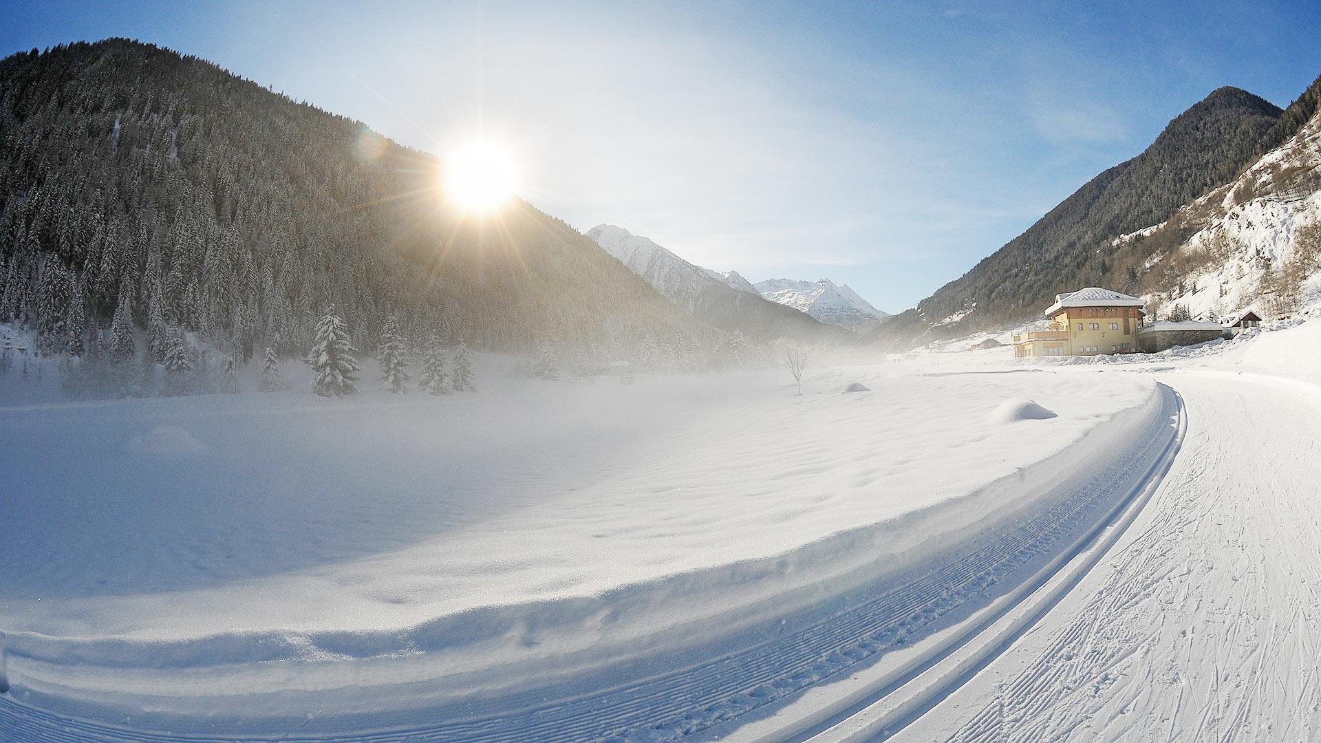 Immagine di testata per Emozioni uniche durante le escursioni invernali in quad in Val di Sole