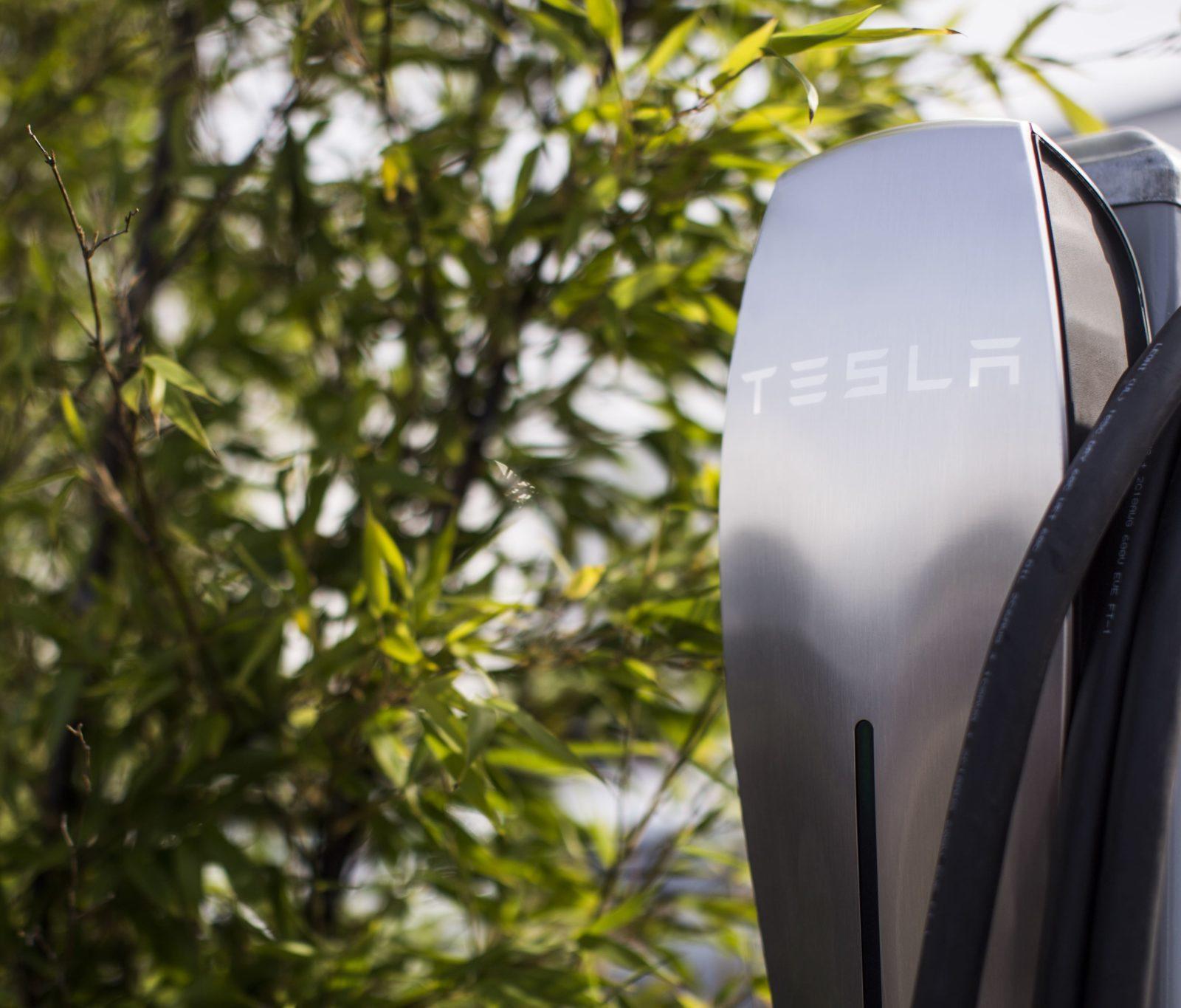 Immagine per Tesla Destination Charging