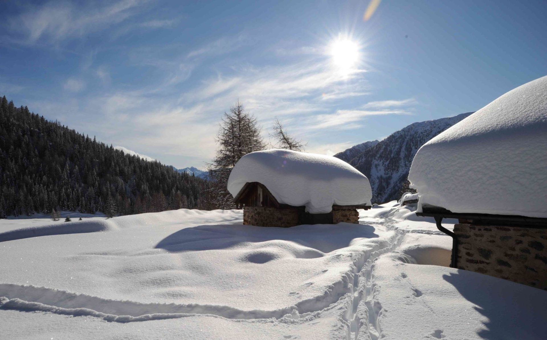 Immagine testata per Services included Winter