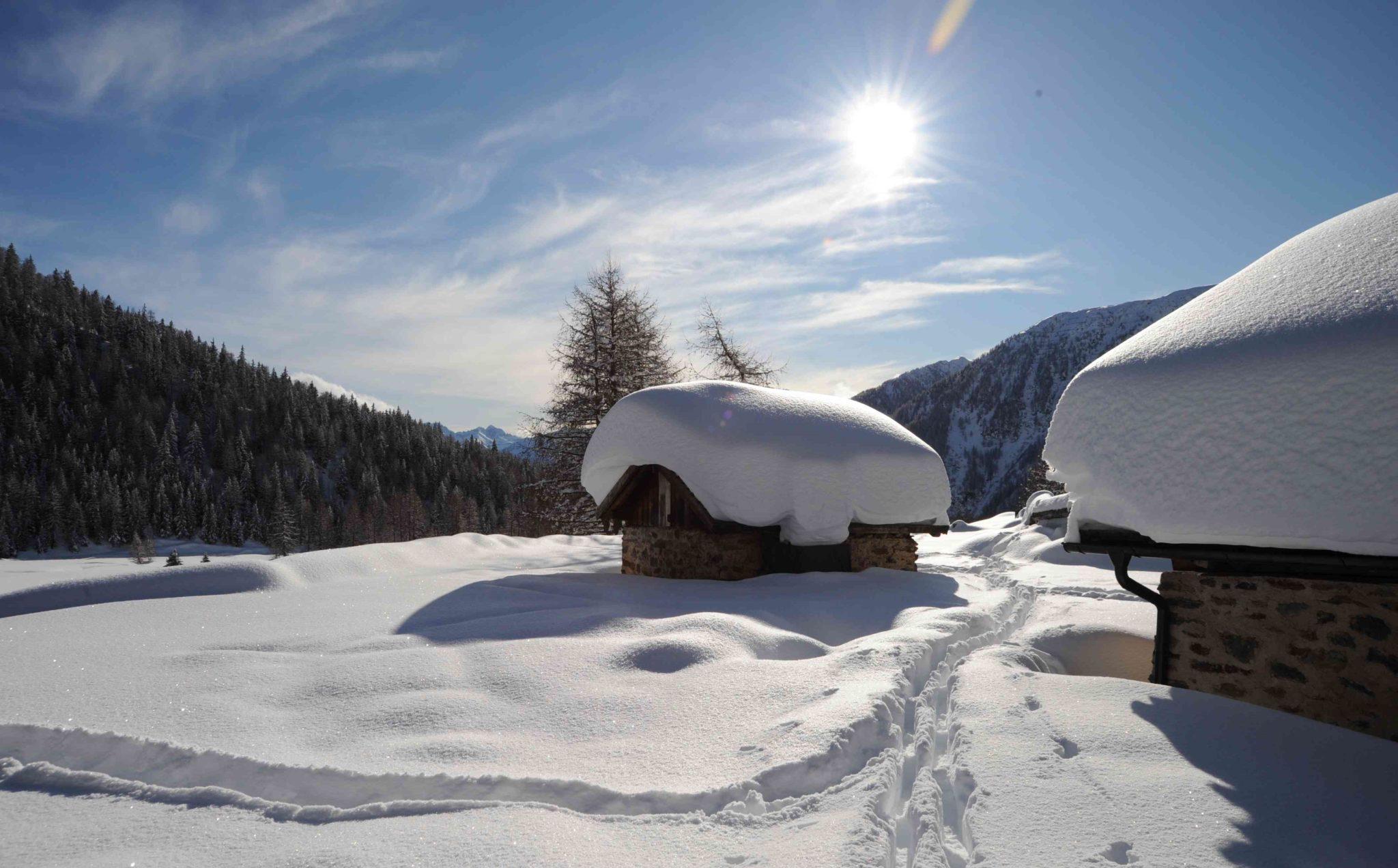 Immagine di testata per Winter – Serviceleistungen inbegriffen