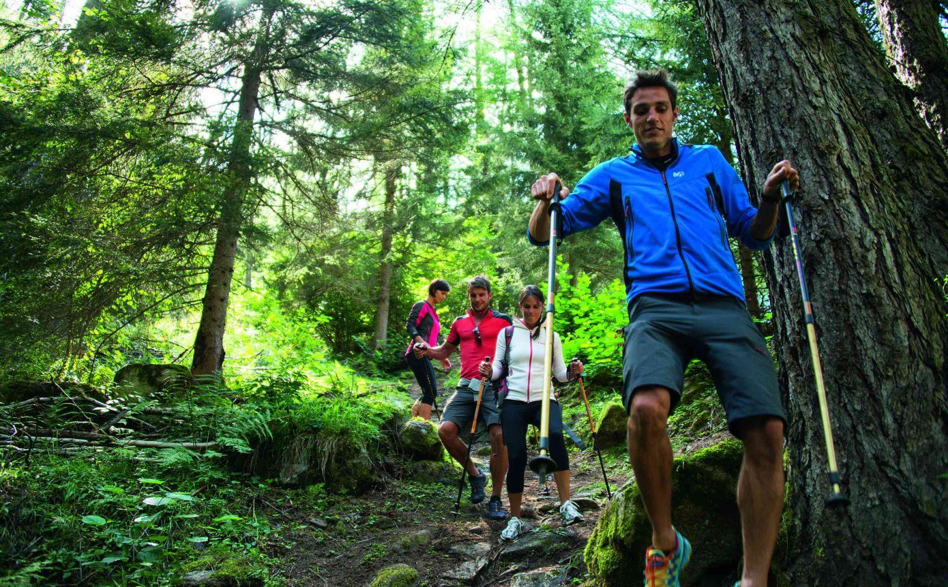 Immagine di testata per Discovering the Italian Alps: Val di Sole Pejo, a trekking paradise!