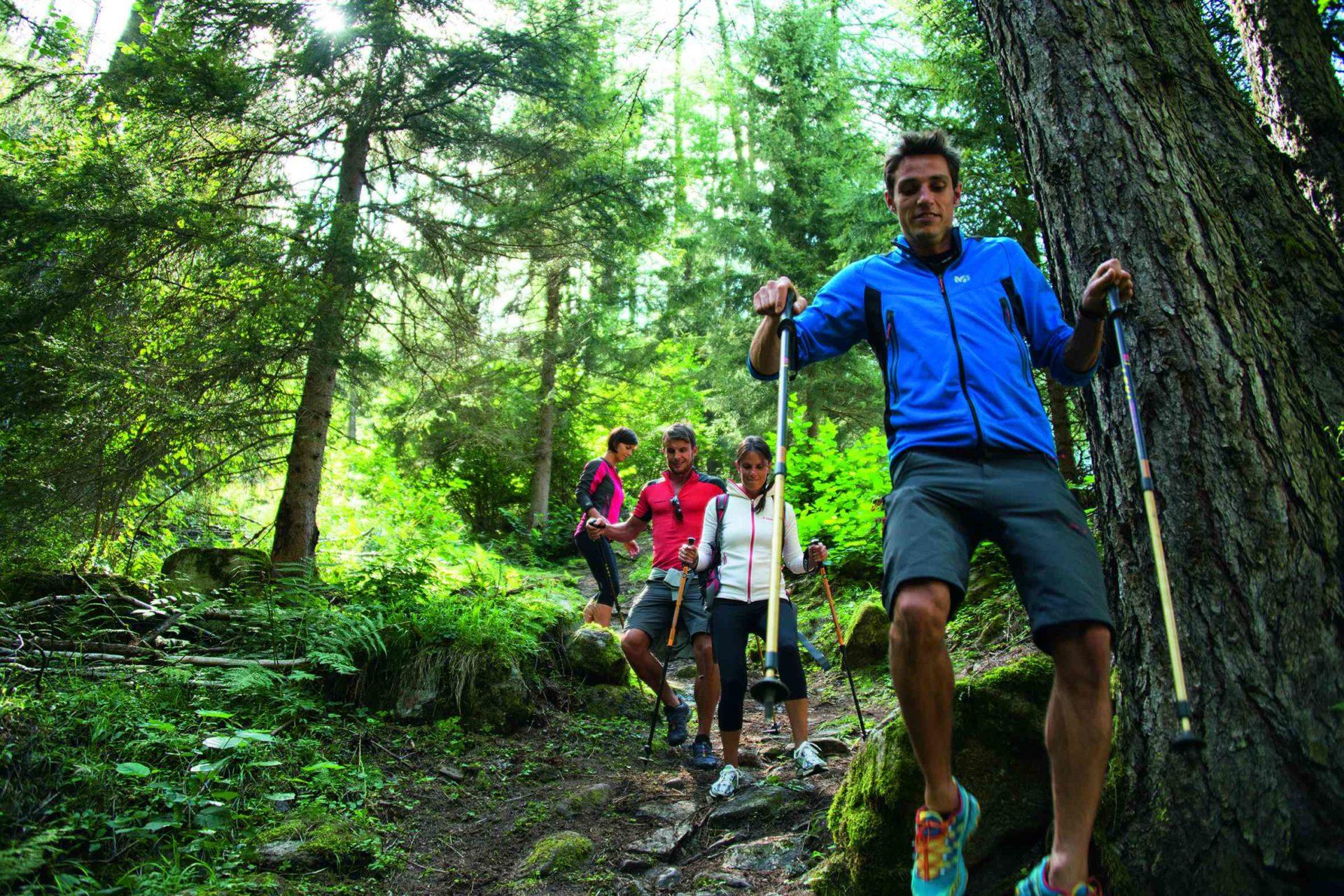 Immagine di testata per Alla scoperta delle Alpi italiane: Val di Sole Pejo, paradiso del trekking!
