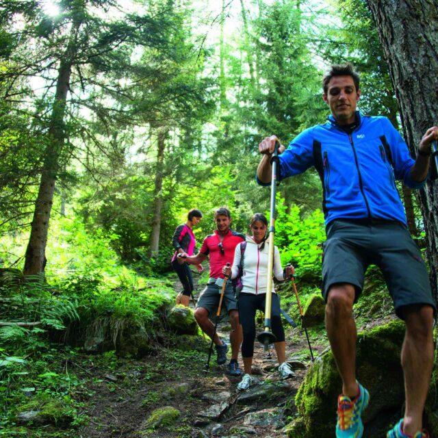 Image for Alla scoperta delle Alpi italiane: Val di Sole Pejo, paradiso del trekking!