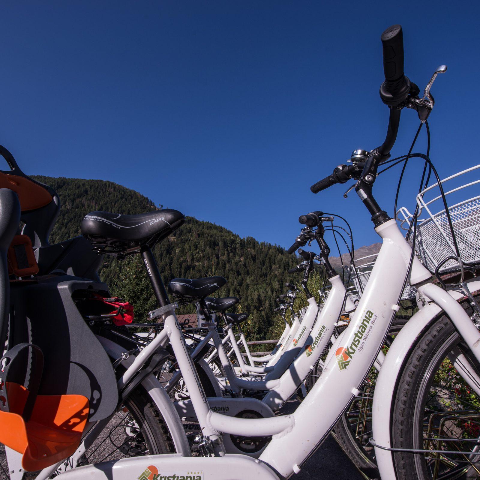 Immagine per Bike hotel service per escursioni in bici a Pejo, Val di Sole