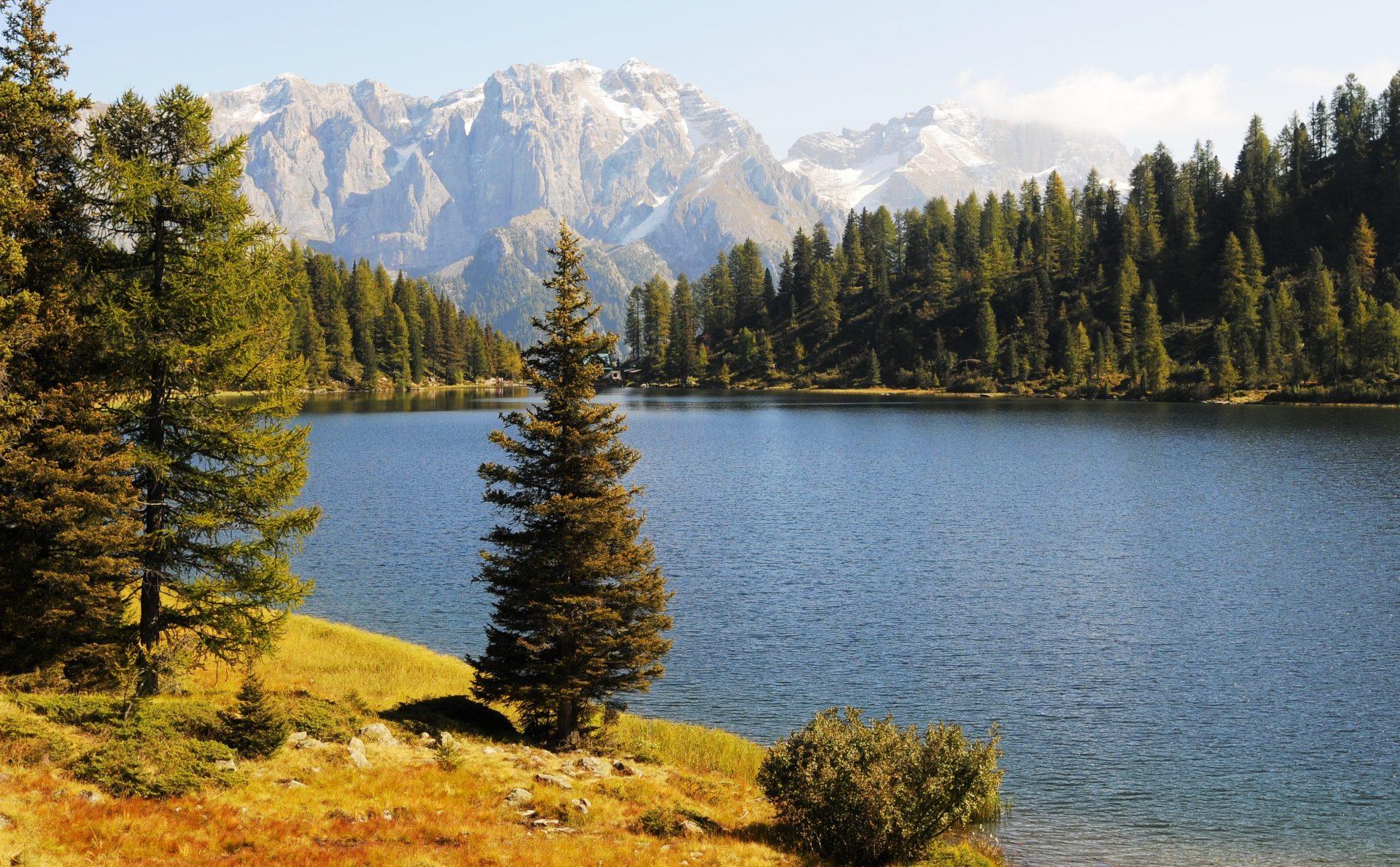 Immagine di testata per I magnifici 2: Lago Alto e Malghette