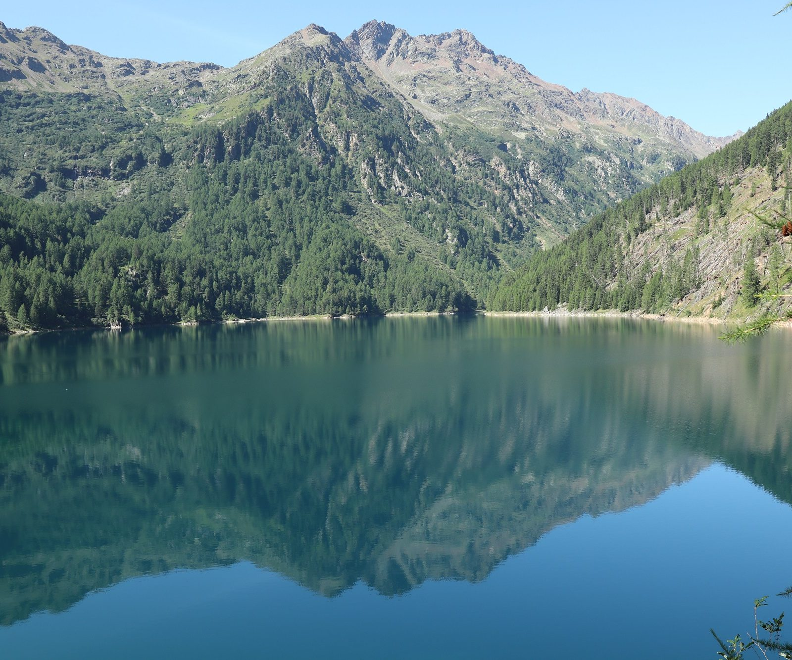 Image for Everyone at Pian Palù Lake!